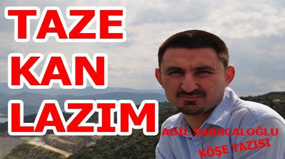 TAZE KAN ARANIYOR