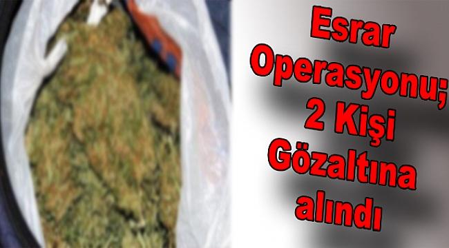 Esrar Operasyonu 2 Kişi Gözaltına alındı