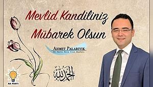 """Palabıyık; """"İslam coğrafyası, birlik ve beraberliğin, kardeşliğin ve barışın doğduğu topraklardır"""""""